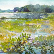 sippo lake ohio watercolor landscape