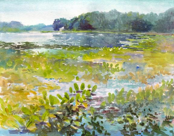sippo lake ohio watercolor landscape